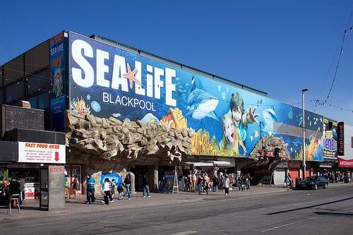 Hotels Near Blackpool Aquarium